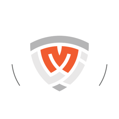 Mastery Leadership Institute